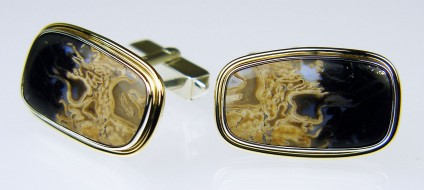 Petrified palm wood cufflinks - Petrified palm wood cabochon pair set in silver & 9ct yellow gold. Cufflinks are 25 x 15mm