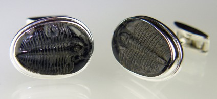 Trilobite cufflinks in silver - Pair of fossilised trilobites (Elrathia sp) from Utah, approximately 520 million years old, set in silver