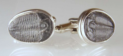 Trilobite cufflinks in silver - Pair of fossil trilobites, Elrathia kingi, 520 million years old from the Wheeler Shale, Utah, given a new life in a pair of Just Gems cufflinks
